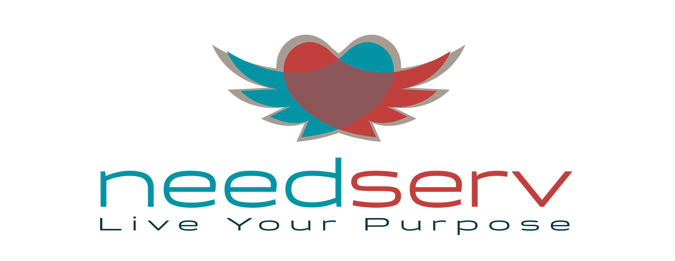Needserv is The Service Arm of The Jesus Alliance